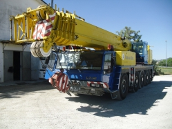 Truck crane sold to a customer in Dubai